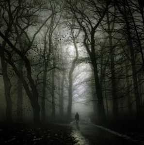 "A Flash Fiction Story: ""The Woods"""