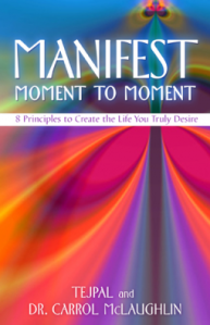 Manifest Moment To Moment: Book Review