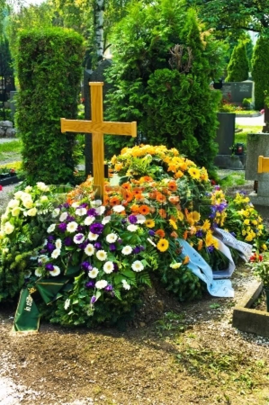 Живые цветы на кладбище фото