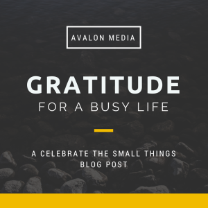 Avalon Media: Gratitude For A Busy Life