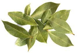 A to Z Challenge : Bay Leaf