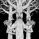 The Woods -  A Haiku