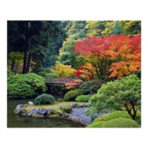 Fall Colors At Portland's Japanese Garden - Poster
