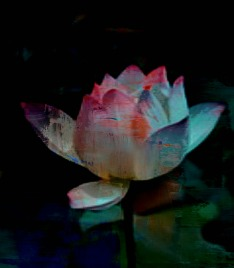 Lotus In Blue by Claudia H. Blanton