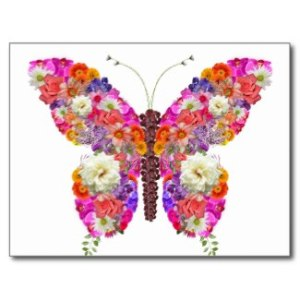 Butterfly Floral Postcard