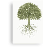 Tree With Roots by Claudia H. Blanton