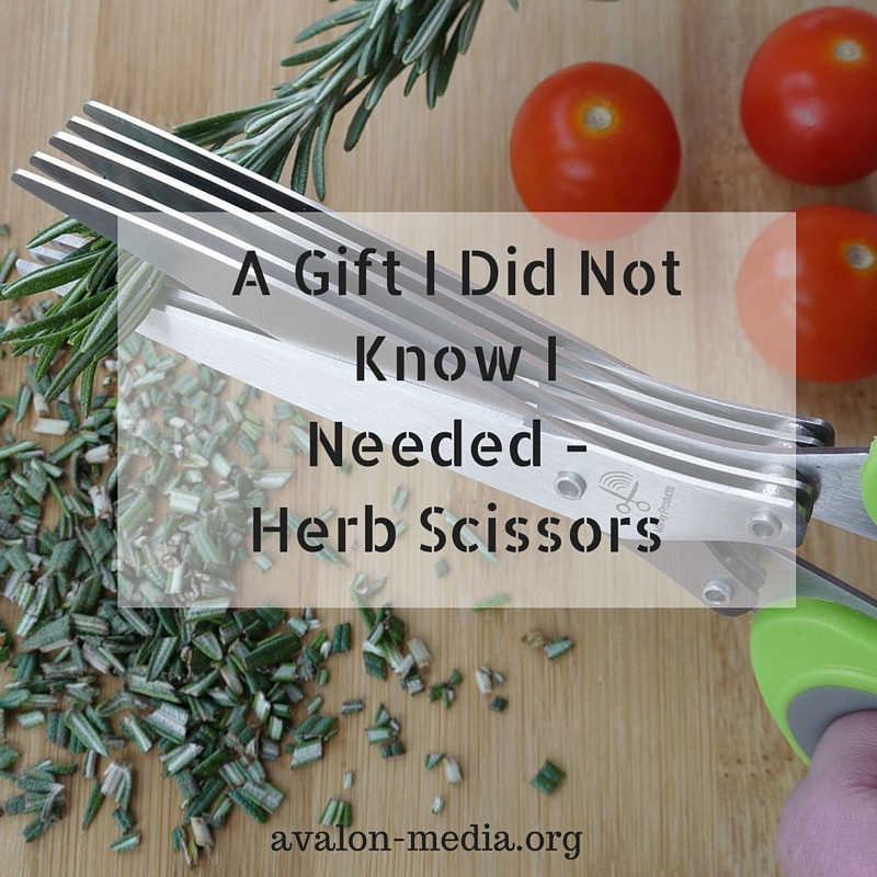 A Gift I Did Not Know INeeded - Herb Scissors