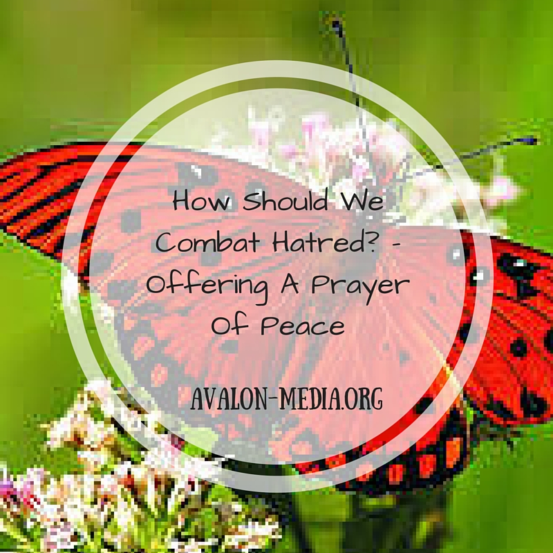 How Should We Combat Hatred- - Offering A Prayer Of Peace