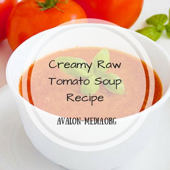 Creamy RawTomato Soup